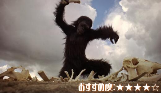 映画「2001年宇宙の旅」あらすじ、感想【HAL怖すぎ!キューブリックの革命的作品】